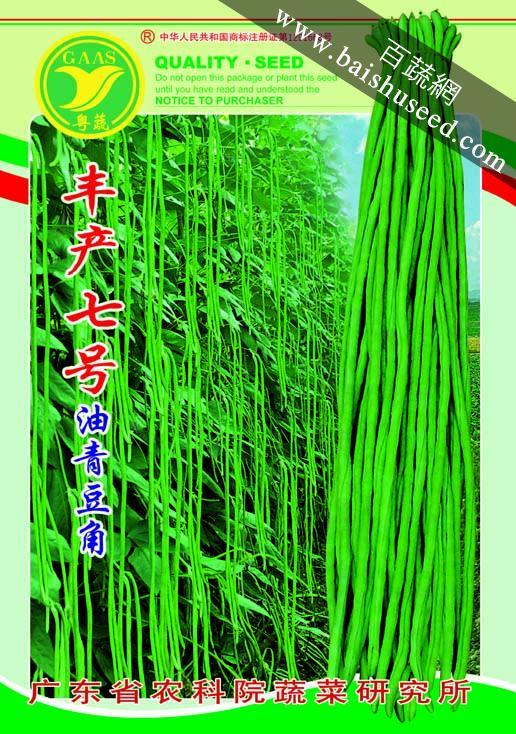 广东粤蔬 丰产七号豆角 广东农科院选育 种子红白花色 2-4月 7-8月适播 豆角种子 400克装